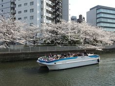 Yakatabune River Cruise. A great way to see Tokyo on a budget is to ride the yakatabune cruiser. It cruises down the Sumida River, allowing tourists to take in all the sights of Tokyo's downtown area. There is a great opportunity to photograph many famous sightseeing spots on the cruise.