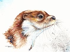 Original Watercolour Painting by Be Coventry,Animals,Realism,Otter
