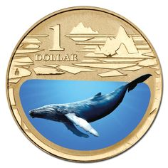$1 2013 Polar Animals - Humpback Whale Coloured Al-Bronze UNC - Shop - M.R Roberts (Wynyard Coins) Polar Bear Color, Undersea World, Polar Animals, Humpback Whale, South Pacific, Goods And Services, Site Design, South America, Weird