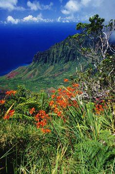 Na Pali Coast, Kauaʻi, Hawaii by David Cornwell