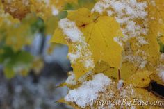 Winter by William Sargent on Etsy
