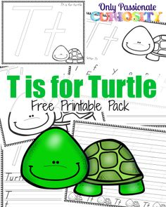 Check out the complete ABC Animals Handwriting Activity Book This pack includes 6 pages for the letter T. Animal Activities, Hands On Activities, Kindergarten Activities, Book Activities, Turtle Classroom, Turtle Book, Handwriting Activities, Free Preschool, Preschool Classroom
