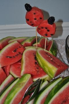 "Watermelon Lady Bugs - ""Down in the Garden"" 1st Birthday Party"
