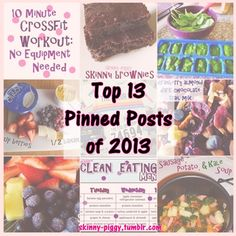Top 13 Pinned Posts of 2013 [Skinny Piggy]