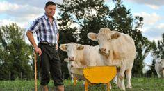 Chi è l'imprenditore agricolo e come vengono classificate le attività agricole? Quali sono le figure professionali che operano in agricoltura?
