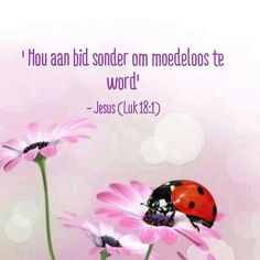 Inspirational Qoutes, Inspiring Quotes About Life, My Bible, Bible Scriptures, Inspiration For The Day, Afrikaans Quotes, Special Words, Scripture Quotes, Trust God
