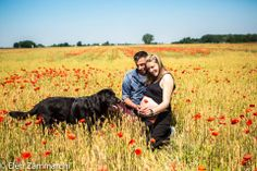 #maternity session in the countryside #dog #elenzammarchi #mz