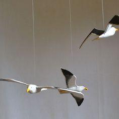Aves en Bandada - chiwanku