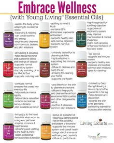 Essential Oils - Embrace Wellness with Young Living Premium Starter Kit and Educational Pack from LivingLocurto.com