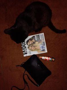 FlatLay #flatlay #winter #cat #Christmas #BimbaeLola #amariavaidosamagazine