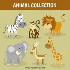 Buena colección de animales salvajes