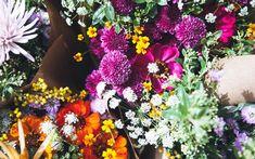 flowers from FLO atelier botânico. Design Floral, Garden Landscaping, Floral Arrangements, Floral Wreath, Bouquet, Wreaths, Landscape, Flowers, Color