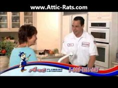 Lighthouse Point Attic Rat Removal  Attic Rodent Control Lighthouse Point