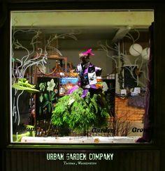 Urban Garden Company in downtown Tacoma. Flora is all dressed for the holidays. Anyone else doing a Thuja frock this season?