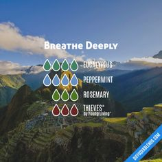 Breathe Deeply - Essential Oil Diffuser Blend