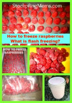 How To Flash Freeze Food + lot of great tips on freezing food. This is a great way to freeze berries & veggies because they're frozen separately, so you only take out what you need.