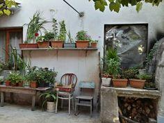 #garden#green##secretgarden