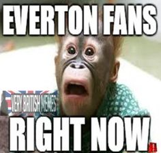 Everton Fans Right Now