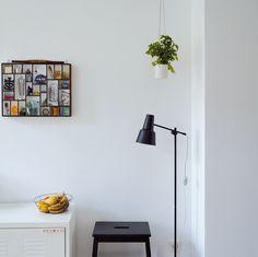 Plant Hanger by #wsake x #otchipotchi in my kitchen