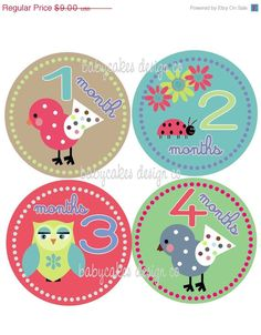 ON SALE Monthly Onesie Stickers Girly Birds & by babycakesdesignco, $7.20