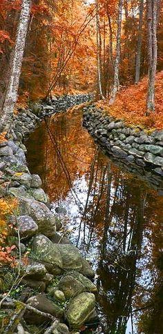#Autumn #Creek