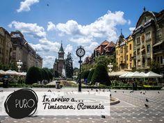 #puro a #Timisoara