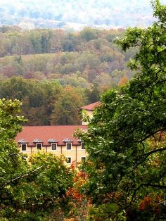 Hulbert OK Monestary. Clear Creek Abbey. The monks live in silence except for singing the original Gregorian Chants. Retreats are available (you don't even have to be Catholic).