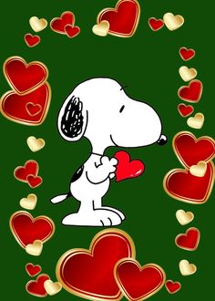 Snoopy Love, Charlie Brown And Snoopy, Snoopy And Woodstock, Snoopy Wallpaper, Wallpaper S, Snoopy Quotes, Peanuts Snoopy, Beagle, Painted Rocks