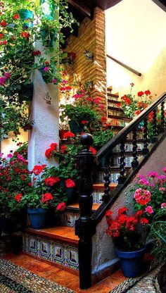 I want my house filled with plants and fresh cut flowers