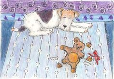 Proud wire fox terrier...poor bear!!!