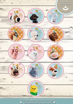 kit printable multipropouse stickers/ toppers – Secret Life of Pets / La Vida Secreta de tus Mascotas – Monkey Stuffed Animal Party Animals, Animal Party, Animal Fun, Animal Room, Stickers, Sticker Paper, Girl Pet Names, Pet Store Display, First Birthday Party Themes
