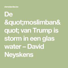 """De """"moslimban"""" van Trump is storm in een glas water – David Neyskens"""