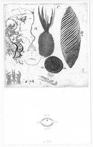 José Antonio Suárez Londoño - etching Untitled 2007 plate: 3 x 3 x cm); sheet: 11 x 7 x 19 cm) Moma, Contemporary Art, Vintage World Maps, Moose Art, Drawings, Fabric, Projects, Prints, Sketch