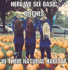 50 Hot Halloween Funny Pictures and Memes – Part 1