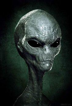 """Gray Alien - """"it"""" looks like us after ..."""
