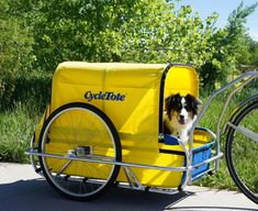 CycleTote Bicycle Trailers and joggers for children, pets, and cargo