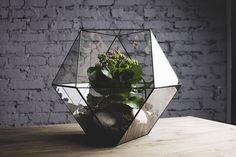 """glass terrarium """"cuboctahedron"""""""