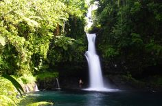 The island of Savaii in Samoa is a #tropical paradise.