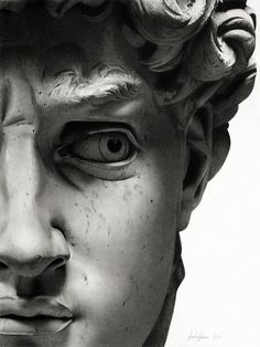 "'The Face Of David': a pencil drawing of Michelangelo's Sculpture ""The David"" by Linda Huber. (2011) 18 x 24 inches Graphite on Smooth Bristol"