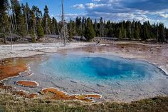 Yellowstone-Silex Spring and Bacterial Mats