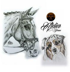 horse en dog