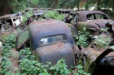 Chatillon Car Graveyard in Belgium  These cars once belonged to US WWII soldiers who were stationed in this region. When the war ended, the cost of shipping the cars was too expensive and they were neatly parked and abandoned.   At one point there were four car graveyards around Chatillon, and as many as 500 vehicles. Only one remain today.