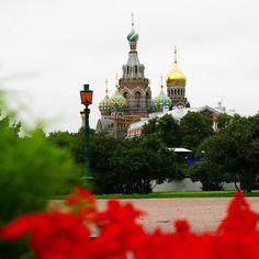 She wolf #Shakira  Location  #Russia Photo  #ElectraAsteri