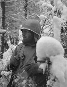 Sgt. Joseph Holmes of Cumberland, Md., is heavily-bearded and battle-worn from days of fighting in the Bastogne, Belgium area. He is typical of the hard-fighting infantrymen from C Company, 320th Infantry Regiment, 35th Division, 10 Jan., 1945