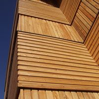 Horizontal and vertical larch boards - apartments