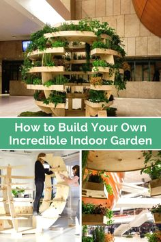 How You Can Build Your Own Incredible Indoor Garden