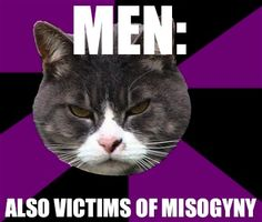 Too true. We forget that so many times men are assumed to be horrible things. Just as women as a group are diverse, so are men. Stop terminology that implies all men are rapists or misogynists. We should all be people first, men/women second, and be able to differentiate the actions of idiots, criminals and assholes from the general group.
