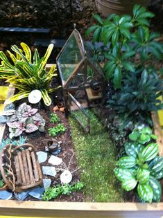 Mini garden Trough Gardens  I am a garden designer by trade and normally design gardens in full size, but also love to design gardens in miniature! There is something unique about creating a comple…