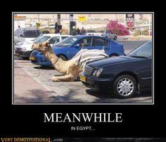 Egypt parking lot