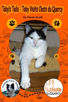 Toby is off on another grand adventure, but little does he know he's about to meet the bravest cats around. Find out more in author Susan Keefe's brand new #childrensbook Toby's Tails – Toby visits Chats du Quercy. 50% of the proceeds are donated to the animal rescue shelter, Chats du Quercy. :